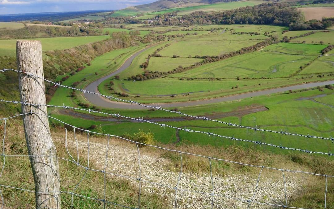 Visiting nature on public transport in Sussex – our favourite routes