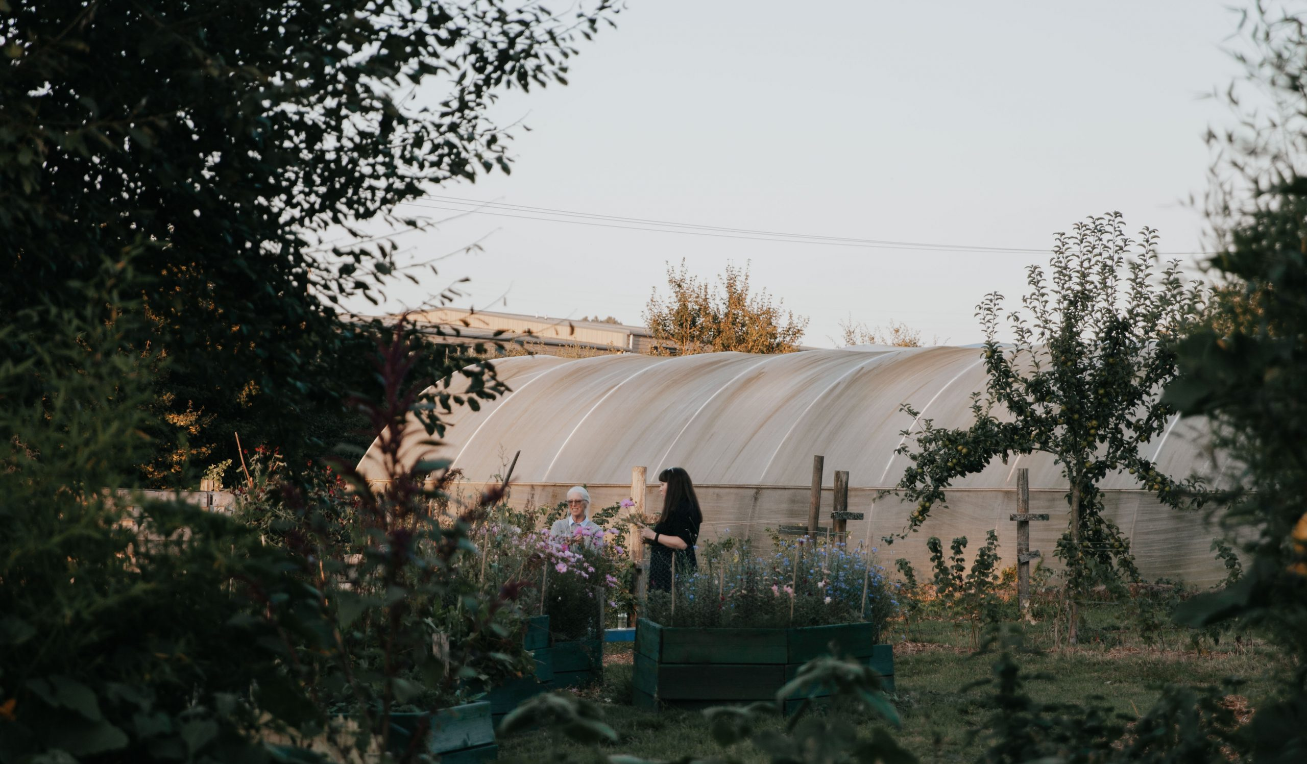 view of people and polytunnel
