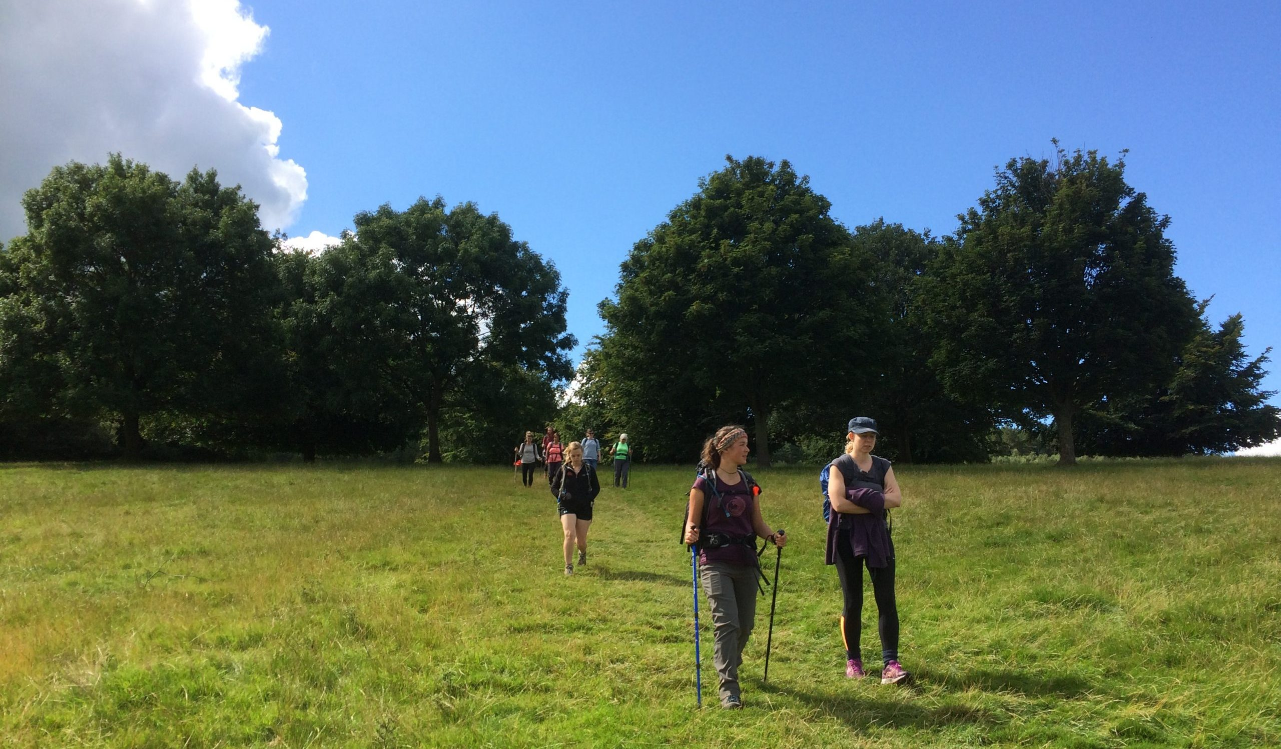 walkers on the downs