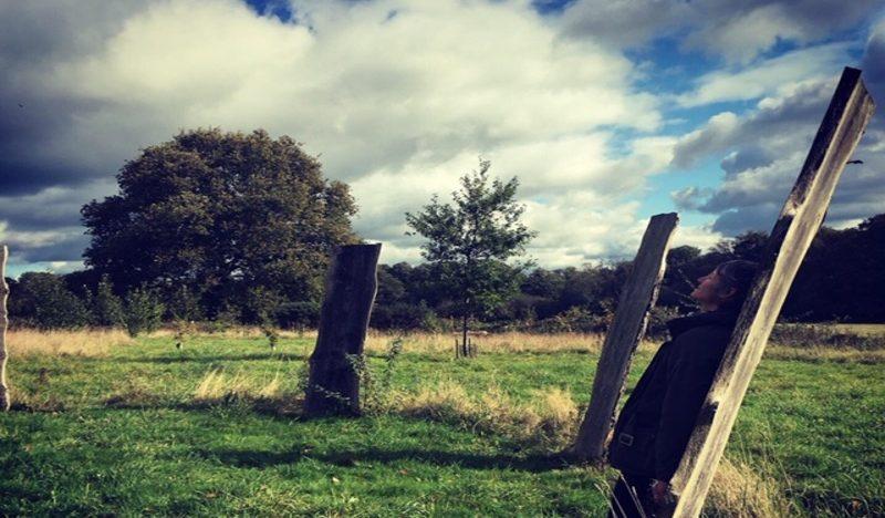 woodhenge at Sheffield Park
