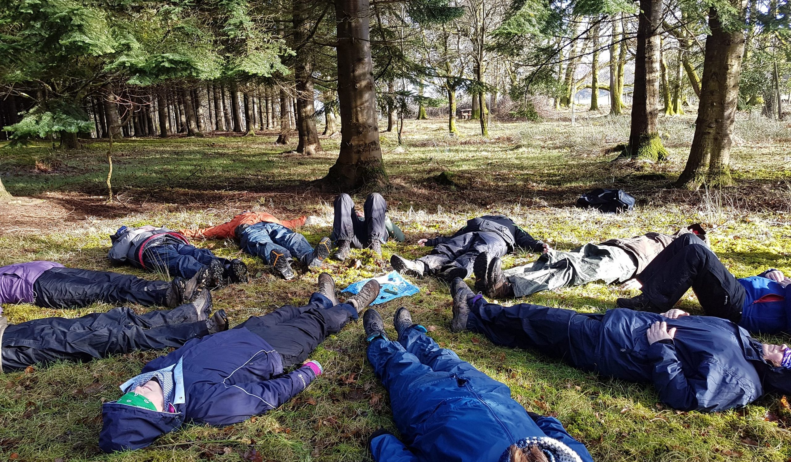 people lying down in the forest