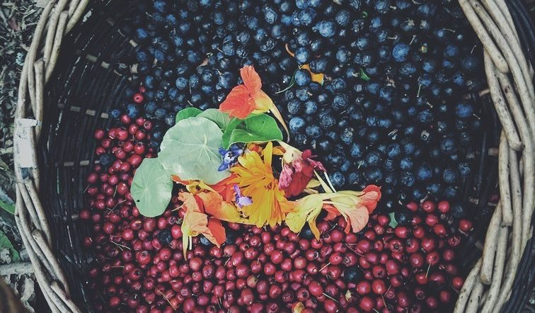 berries and flowers in a woven basket