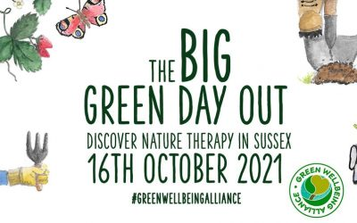 The Big Green Day Out